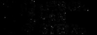 debora van stenis logo